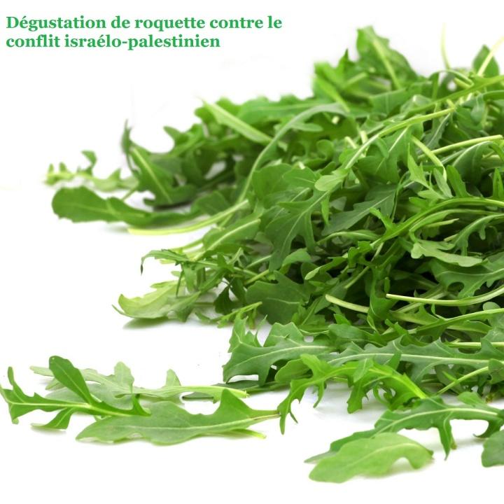salade--roquette_4175127_3276558678924